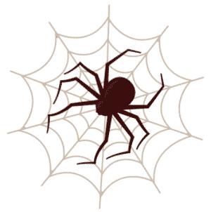 spider image kumo